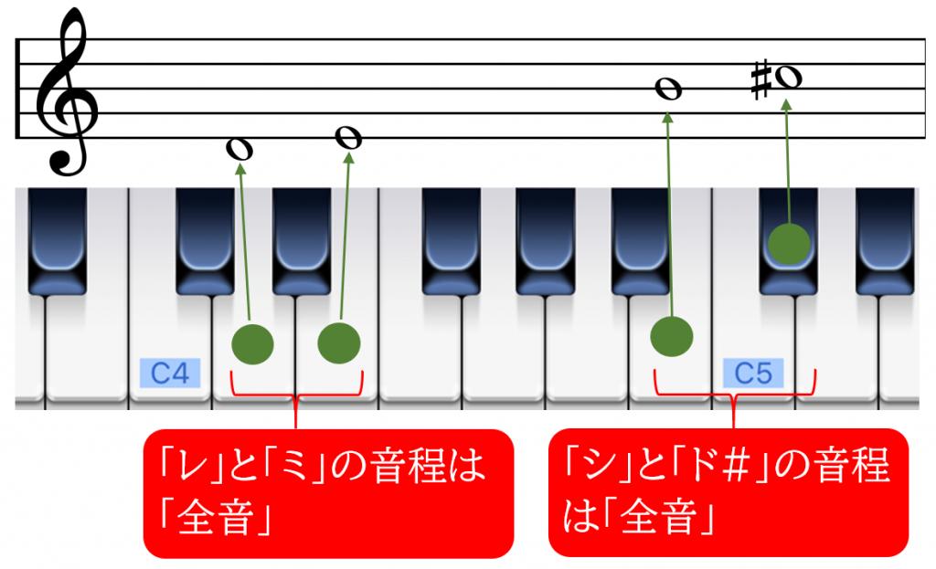 全音の説明